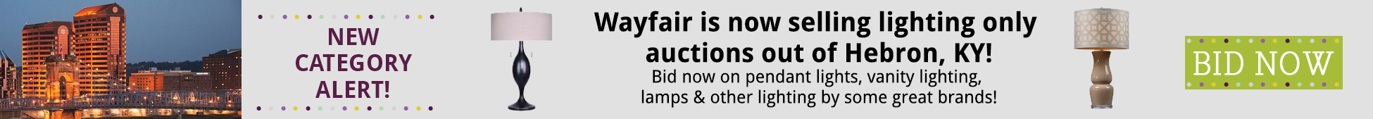 Wayfair New Category Lighting Lamps and More